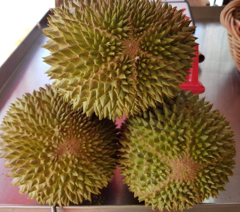 Combat Durian Singapore Delivery