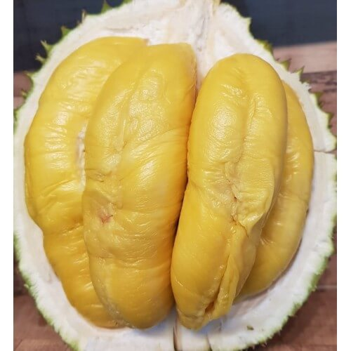 Durian Plantation Online Delivery in SIngapore - Black Gold Durian
