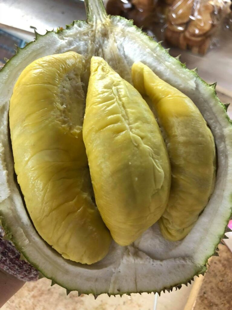 Melvin's Durian Singapore Delivery