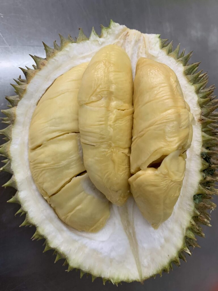 D1 Durian in SIngapore