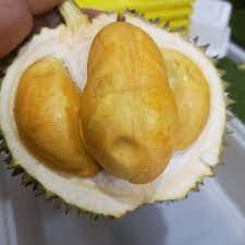 Black Thorn durian in Singapore