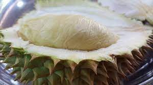 D17 Durian in Singapore