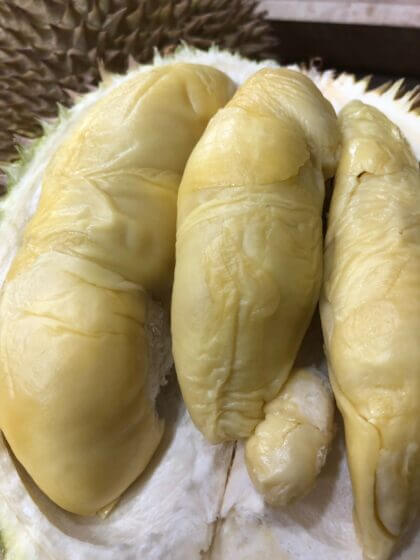 Golden Phoenix Durian in Singapore