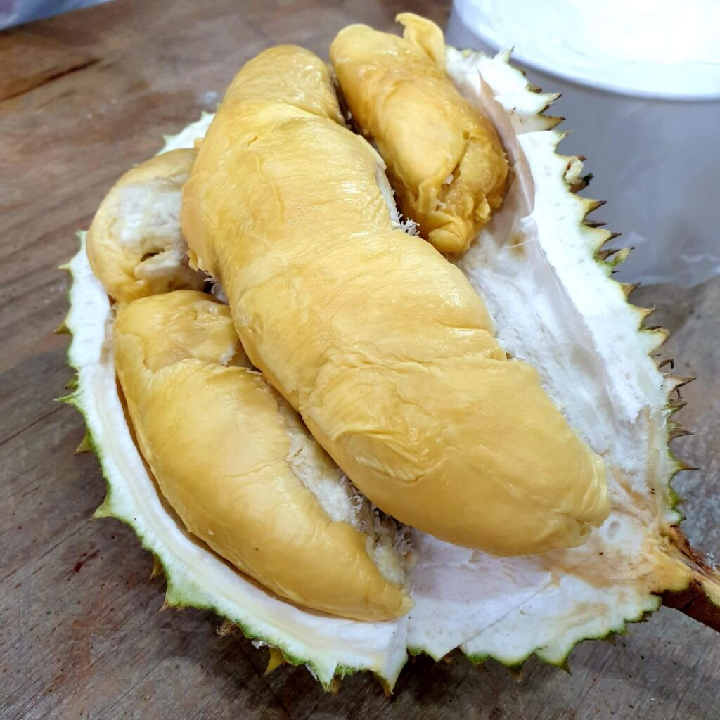 Green Bamboo Durian in Singapore