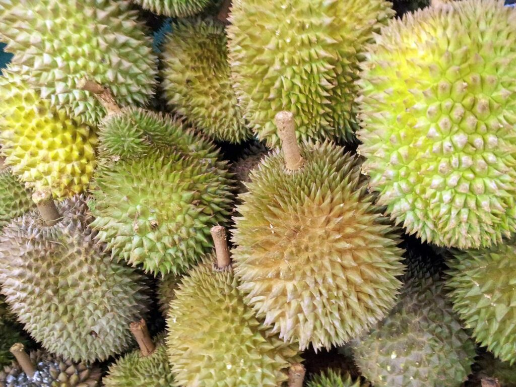 When is Durian Season in Singapore